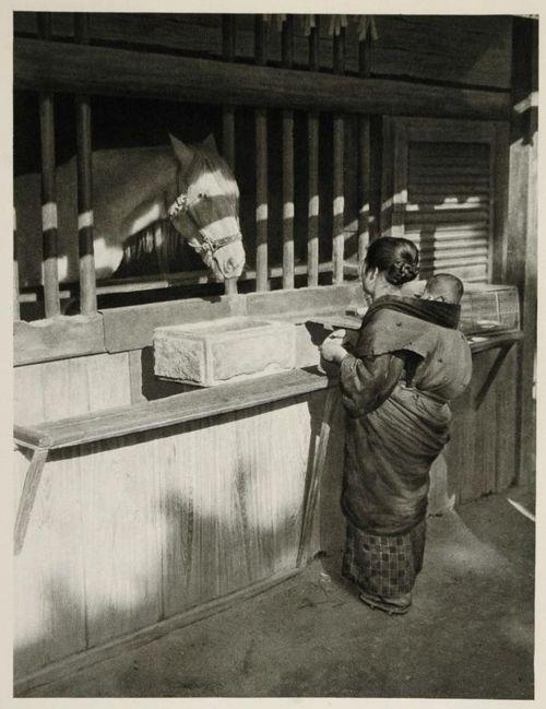 Horse at Nikko